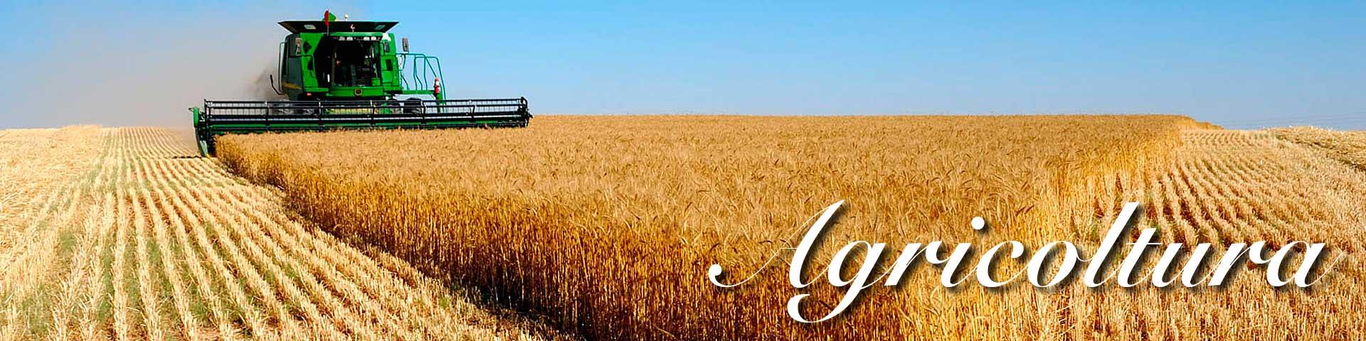 Vendita online prodotti agricoli ed attrezzature per agricoltura