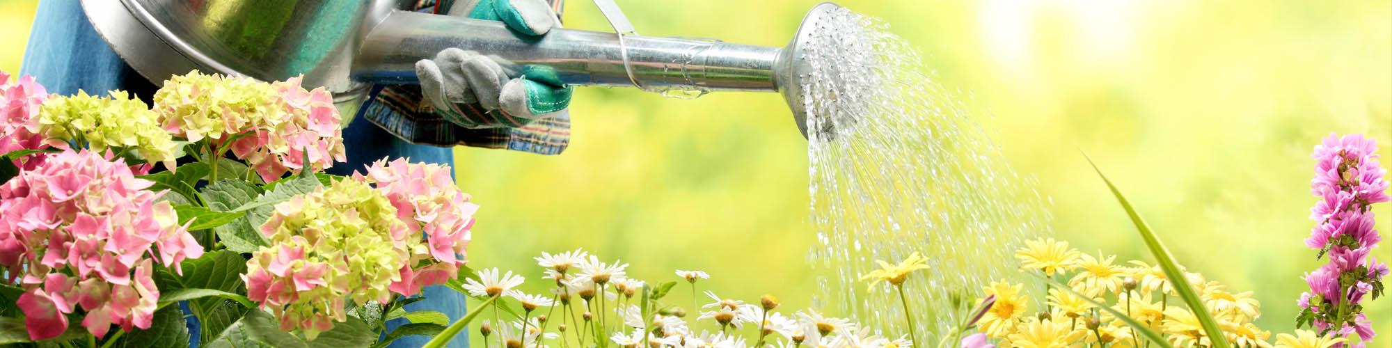 Giardinaggio - Vendita online prodotti per il giardinaggio