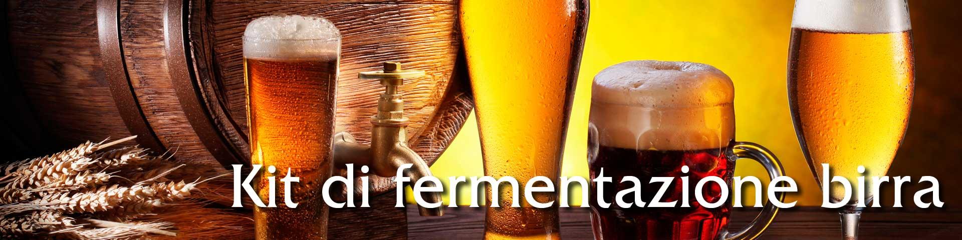 Vendita online kit di fermentazione birra fai da te in casa