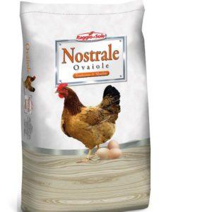 naturovo-mangime-galline-ovaiole-raggio-di-sole-sbriciolato