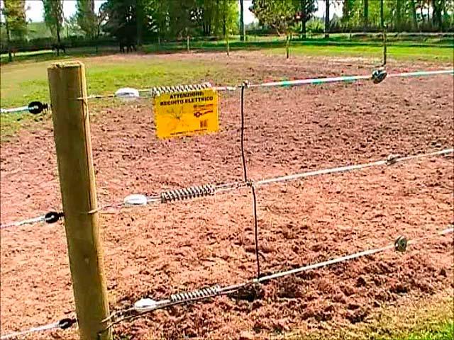 Recinzioni elettrificate emporio della natura for Recinzione elettrica per cavalli