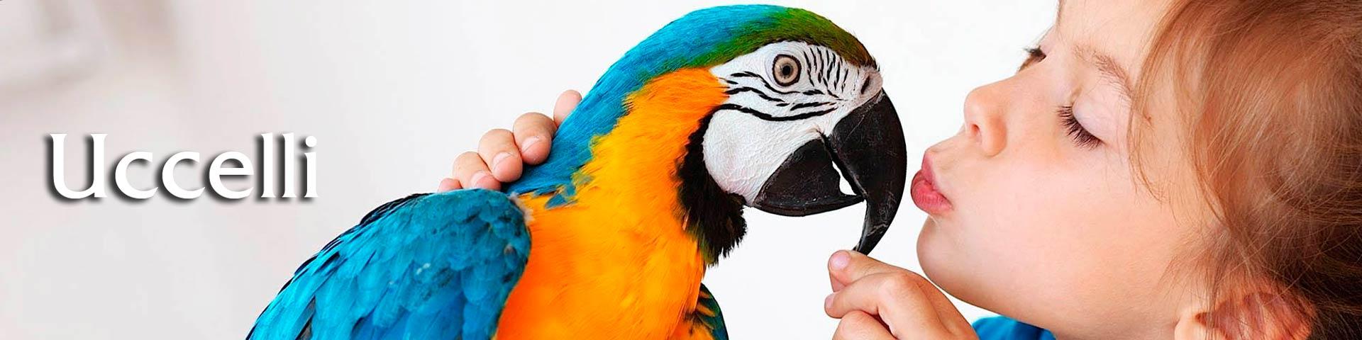 vendita online mangimi per uccelli
