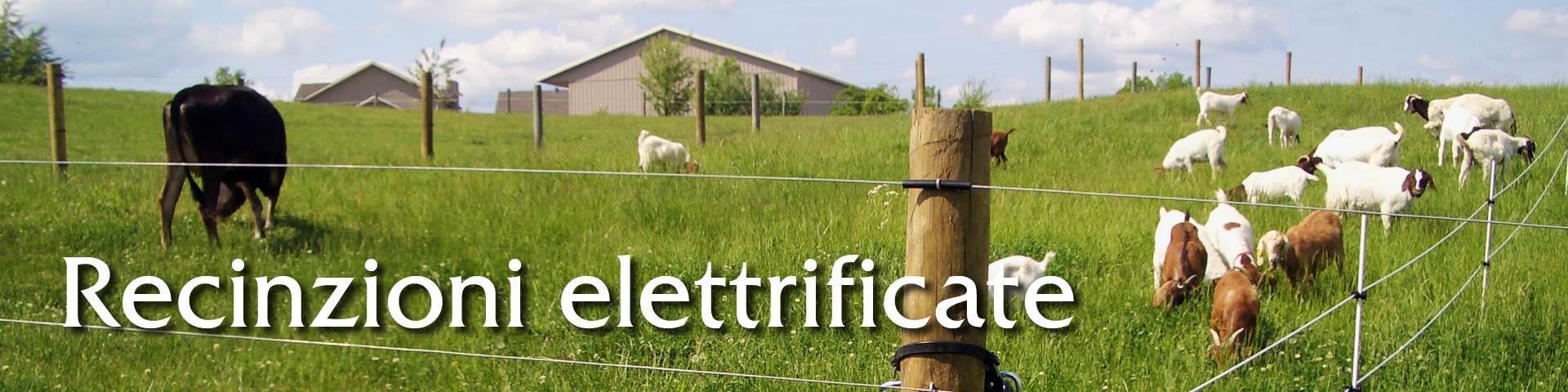 vendita online recinzioni elettrificate