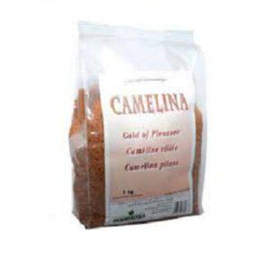 camelina-sativa-gold-pleasure-manitoba-semi
