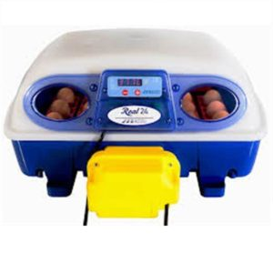 Incubatrice-borotto-real-24-automatica-girauova-uova-gallina